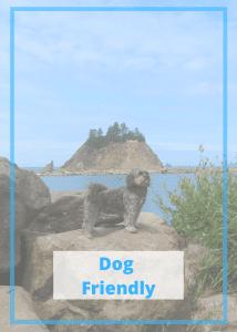 Dog Friendly Travel Blog