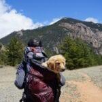 18 Unforgettable Dog Friendly Hikes in Utah