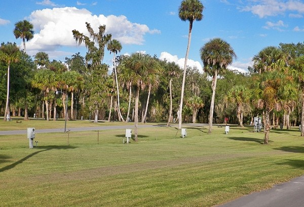 Empty RV campsites on grass