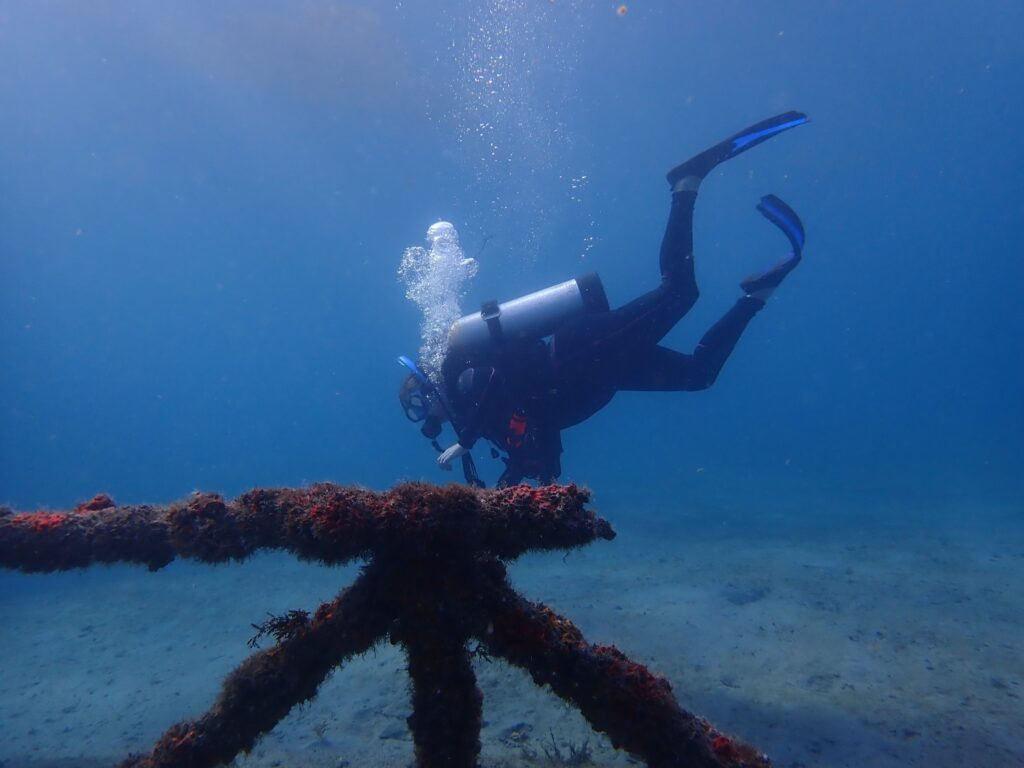 Scuba Diver underwater in Florida