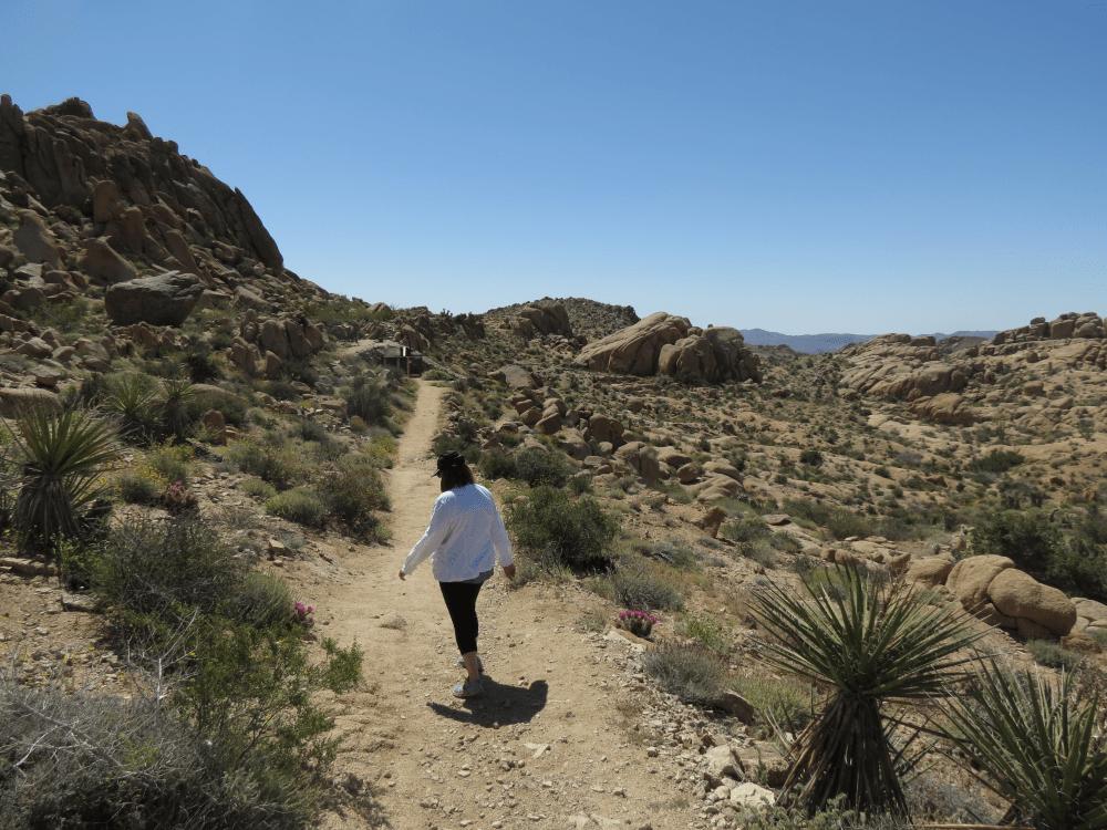 Hiking in Joshua Tree National Park