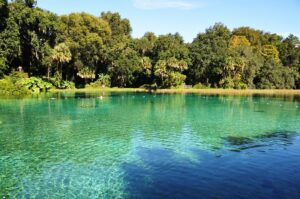 Best Florida State Parks for RV Camping: Rainbow Springs