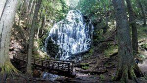 Best Dog Friendly Hikes in Oregon: Ramona Falls