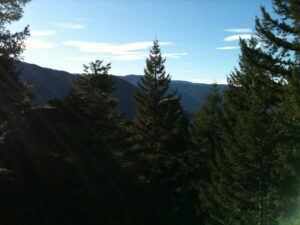 Best Dog Friendly Hikes in Oregon: Castle Canyon Trail